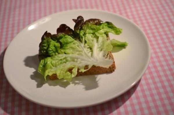 Sandwich mit Salatblatt