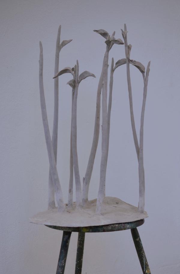 Düsseldorfer Kunstakademie - Einige Pflanzen von Mena Moskopf