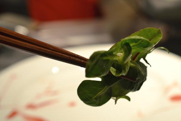 Salat mit Stäbchen im Restaurant Benkay Teppanyaki im Hotel Nikko Düsseldorf