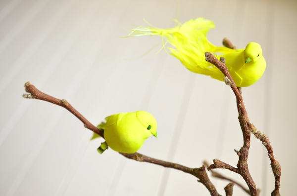 Neongelbe Frühlingsdeko mit Vögeln