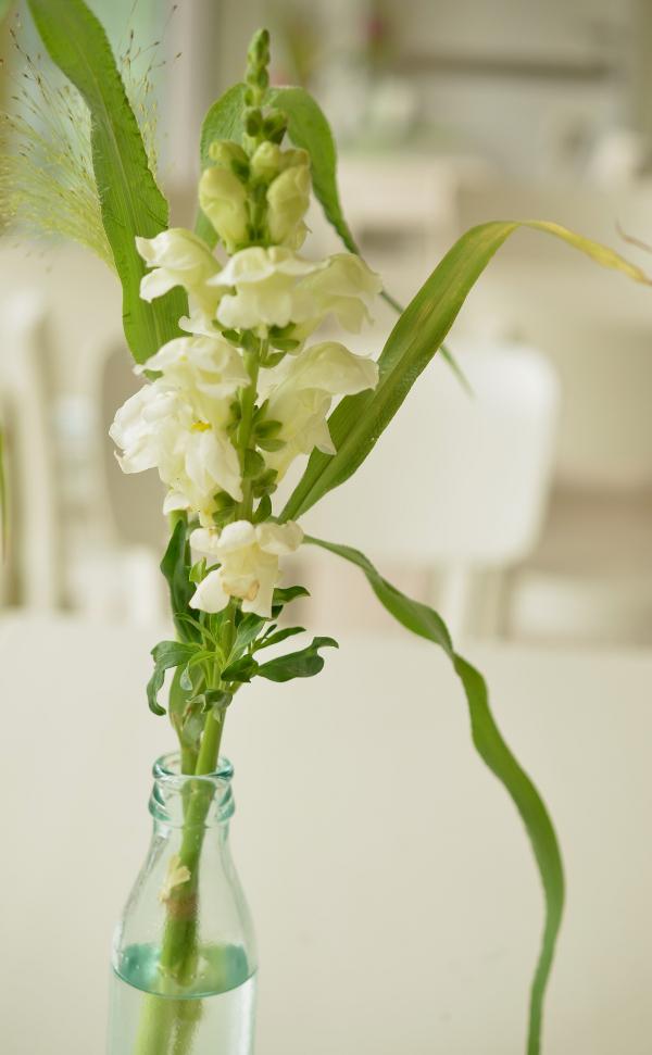 Blumen als Tischdeko in der Eisdiele Nordmanns Eisfabrik in Düsseldorf-Flingern